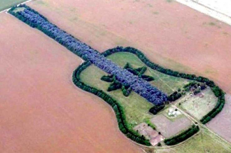Este es un bosque en la forma de un guitarra. El esposo de un mujer que murió hacaba este bosque en honor de su esposa. Se encuentra en  el región de Pampas.