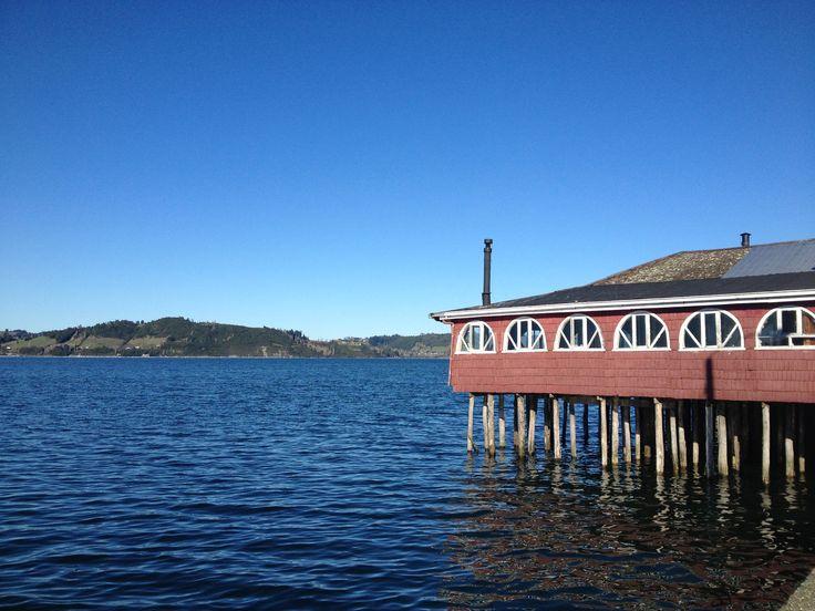 Un restaurante de mariscos en Chiloé