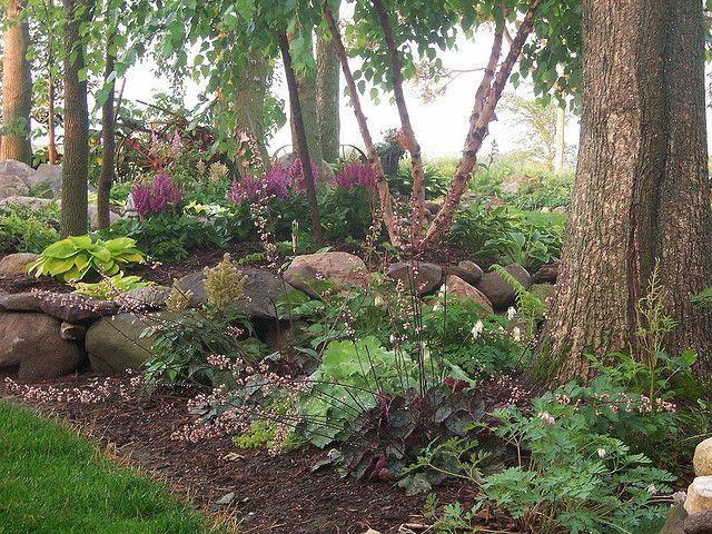 Shade garden coral bells hostas mondo grass boston ivy for Part shade garden designs