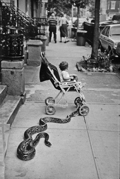 NYC. Leonard Freed. New York City, 1985