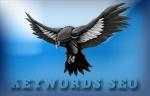 SEO si SEM | Cuvinte cheie - optimizarea site-urilor pentru motoarele de cautare folosind tehnici SEO pentru a obtine trafic
