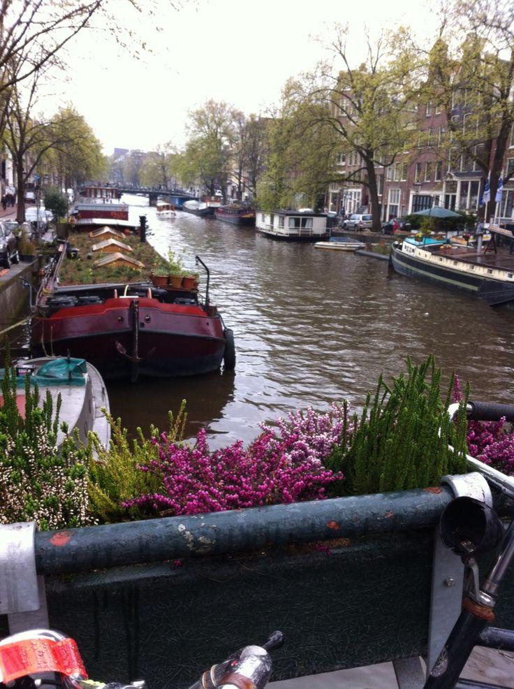 Oltre 25 fantastiche idee su case galleggianti su for Case galleggianti amsterdam