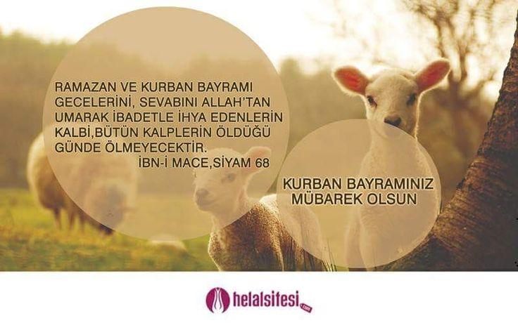 Bayramınız Mübarek Olsun 😊  www.helalsitesi.com #kurban #bayrami #helal #helalgida #helalurunler #saglik #dogal #naturel