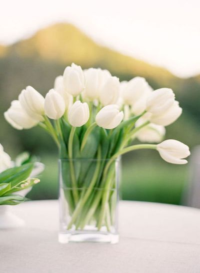 white-tulip-wedding-centerpiece - add something on glass. . . nice taller size for appetizer tables