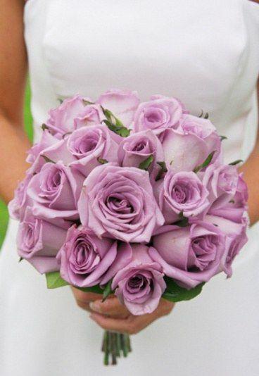 fioletowe róże