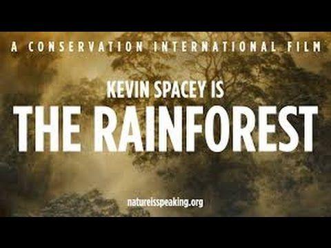 PRALES - Kevin Spacey mluví za pralesy.