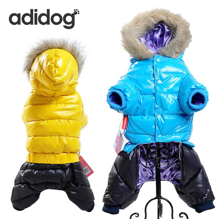 Buy  Hot Sale Winter Pet Dog Clothes Super Warm Down Jacket For Small Dogs Waterproof Dog Coat Thicker Cotton Hoodies For Chihuahua ...Click link for Buy
