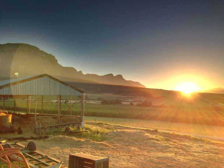 Sunrise, Koelfontein farm in the Ceres Valley, South Africa. (Photo: A Jacobsen)