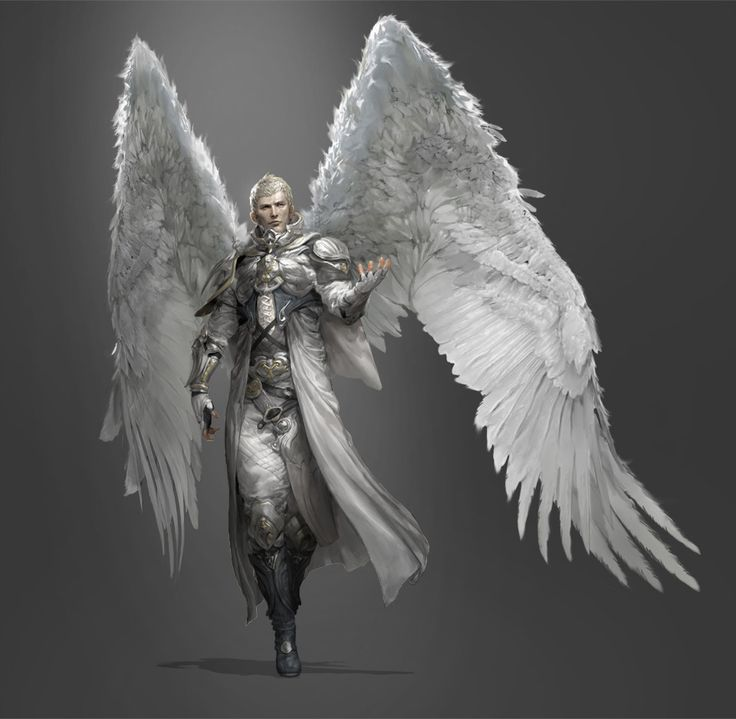 Angel, de Jerry Park