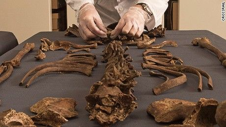 Cause of London's Great Plague revealed by ancient DNA - CNN.com