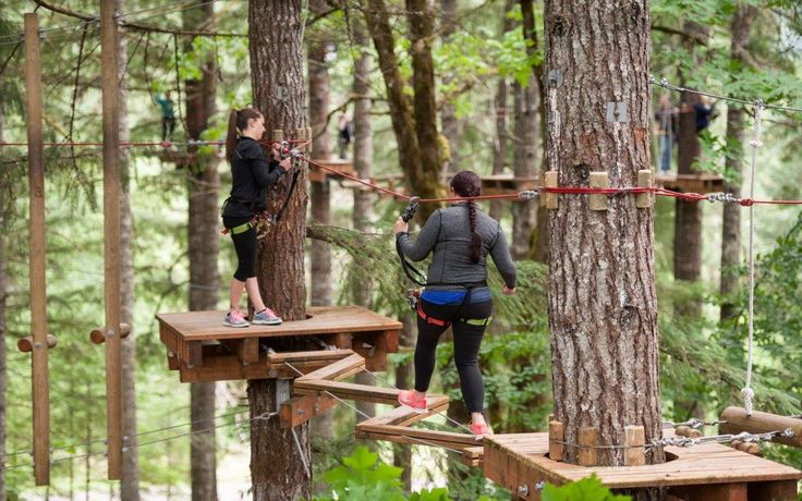 Add This Oregon Adventure Park in the Trees To Your Bucket List | That Oregon Life