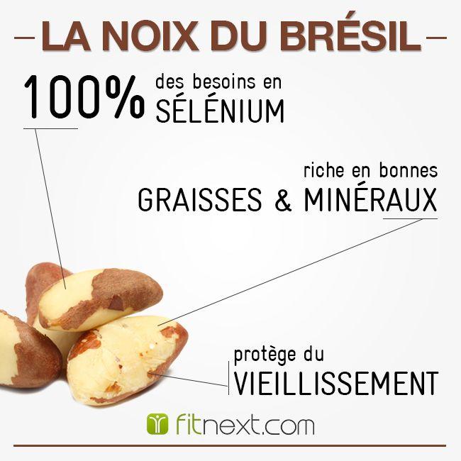 [FIT'ALIMENT] La noix du Brésil est un aliment riche en sélénium. Celle-ci permet de protéger vos cellules du vieillissement et 1 noix par jour suffit à couvrir vos besoins. N'hésitez plus ! Pourquoi ne pas l'intégrer au plus vite dans vos collations à base d'oléagineux ?