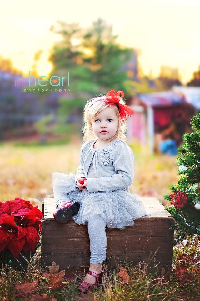 Best 25+ Toddler christmas photography ideas on Pinterest ...