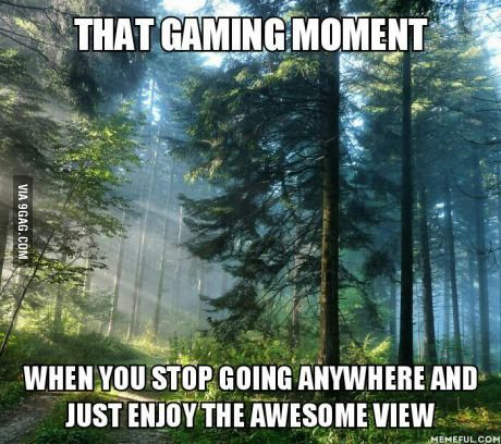 I definitely stopped several times to watch trees swaying in the breeze or check out the cobblestones in Dragon Age: Inquisition and Assassin's Creed Unity. Guilty! <<< for me it was elder scrolls online