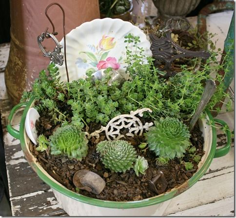 container garden for succulents funky junk