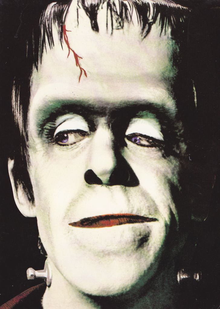 The Munsters - Fred Gwynne as Herman Munster