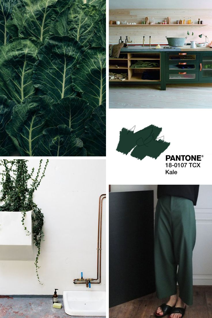 Pantone Spring 2017 Kale | Olive and the Fox | Moodboard