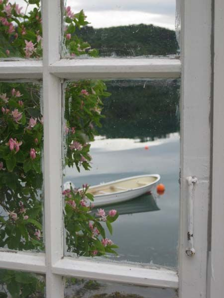 A view from the window...............