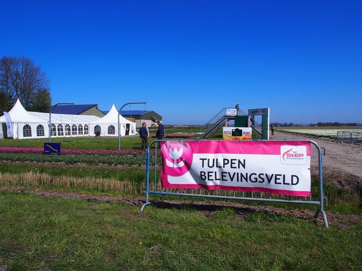 Beleef de Tulpen in de Noord Oost Polder. Holland