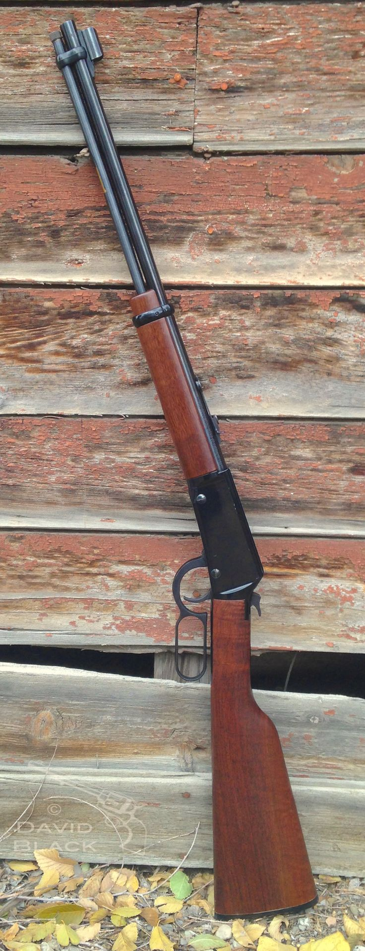 Henry 22 lever action rifle.  Great gun, accurate and fun action.  Love plinking with this gun.