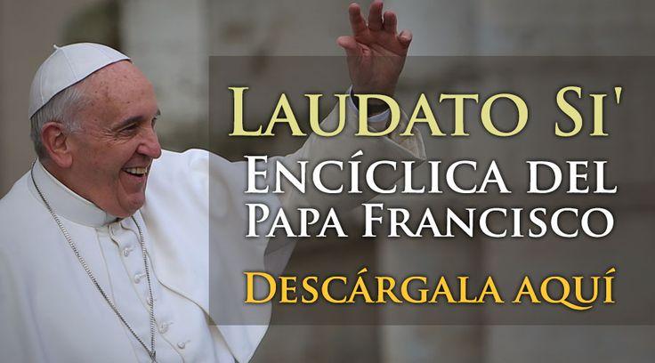 """Esta mañana en el aula nueva del Sínodo en el Vaticano se presentó la segunda encíclica del Papa Francisco titulada """"Laudato Si'"""" (Alabado seas), en la que el Santo Padre reflexiona sobre la creación."""