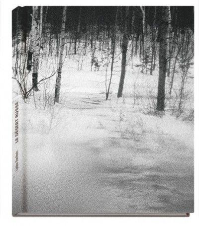 Le Desert Russe (signed) by Ljubisa Danilovic