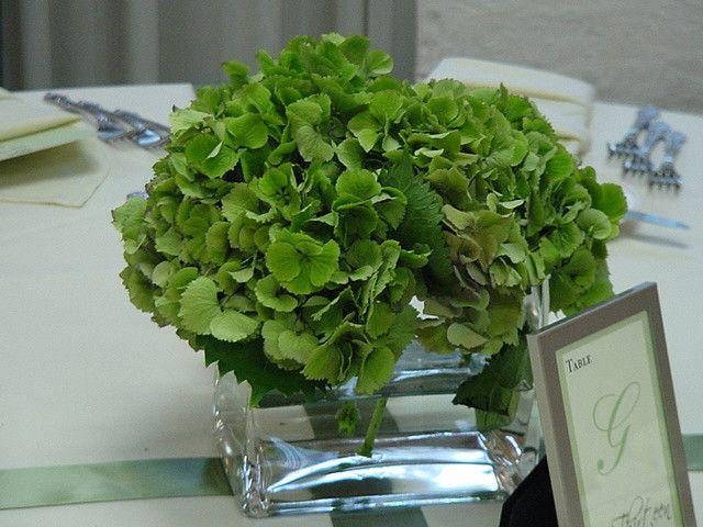 green hydrangea centerpieces   green hydrangea centerpiece   Flickr - Photo Sharing!