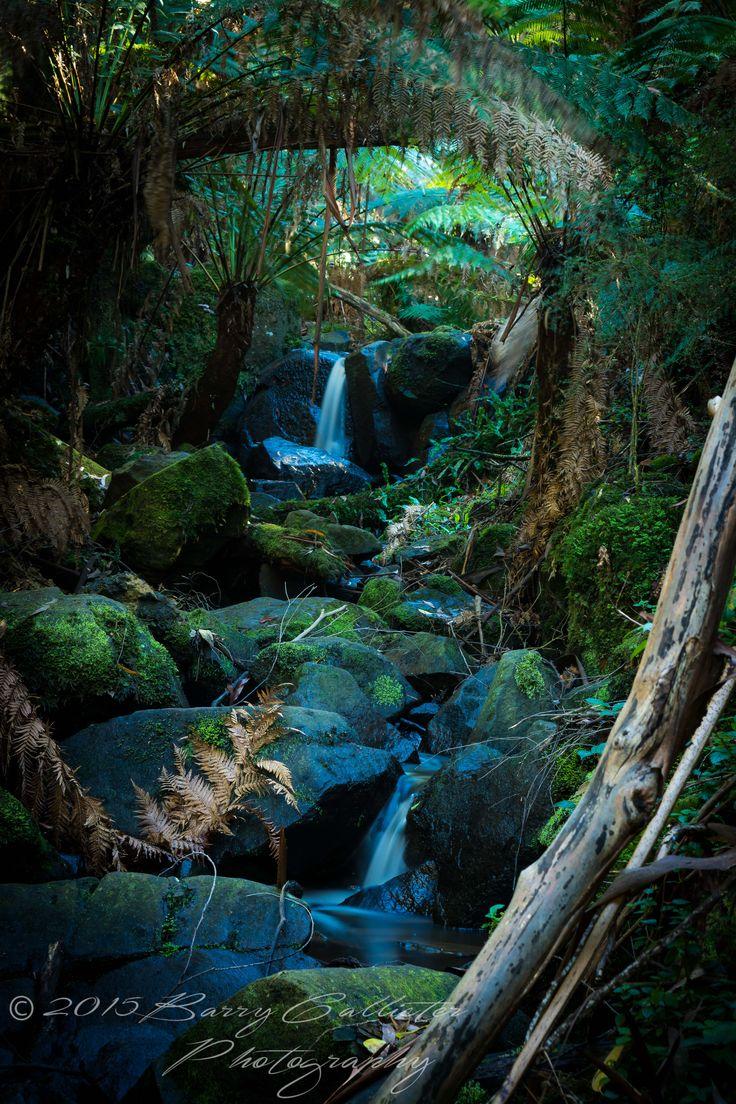 Sherbrooke Falls in The Dandenong Ranges, Victoria, Australia.