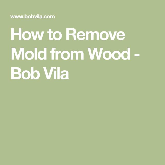 Best 25 Remove Mold Ideas On Pinterest How To Remove Mold Remove Mold Stains And Diy Mould
