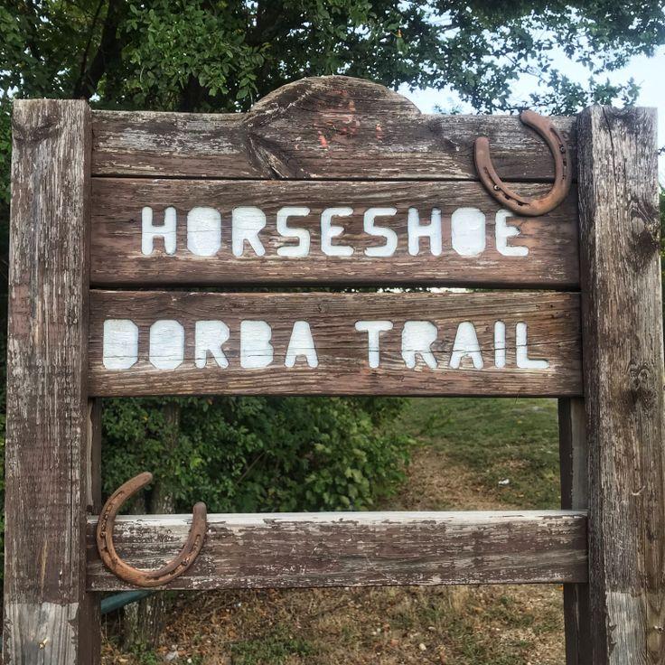 Hiking Horseshoe Trail - Lake Grapevine (With images ...