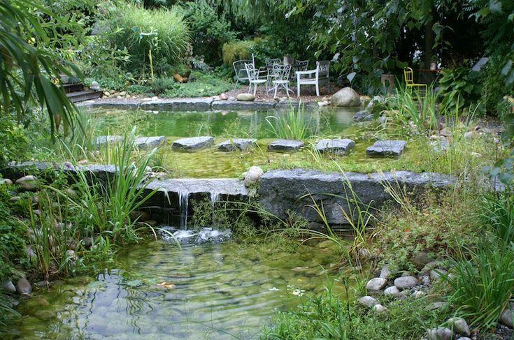 1000 id es sur le th me cascade pour bassin sur pinterest for Specialiste piscine