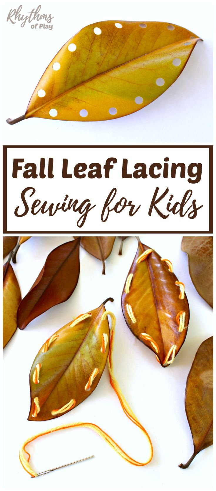 Fall leaf lacing is an easy beginning sewing project for kids. Learning to sew is a fun way to develop the fine motor muscles in the hand necessary for writing and more detailed hand work. Using sturdy fall leaves to practice sewing instead of lacing card