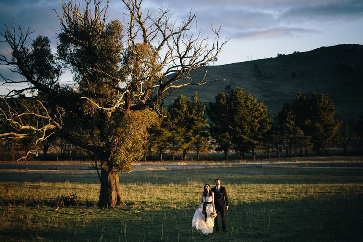 Poachers Pantry wedding ceremony and reception venue - golden hour during sunset with the bride and groom - wide landscape photograph with a beautiful big tree and rolling hills.