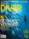 21 Cool Scuba Diving Accessories Every Diver Should Have | Scuba Diving Gear | Sport Diver