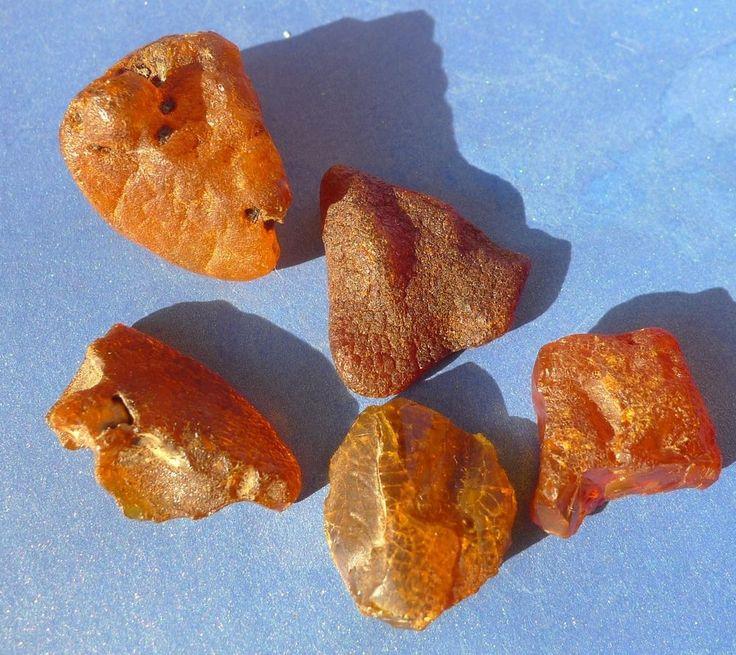 c7 Natural Cognac Honey Baltic Amber loose gems gemstones stone 5psc 13.2gr