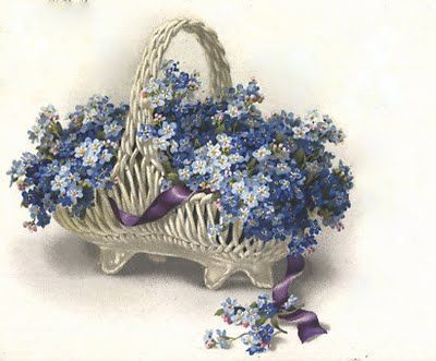 Forget-me-nots... <3