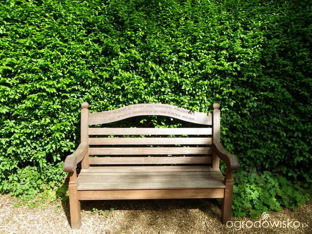 Galeria zdjęć - Ogrody angielskie - Coton Manor Garden - Ogrodowisko