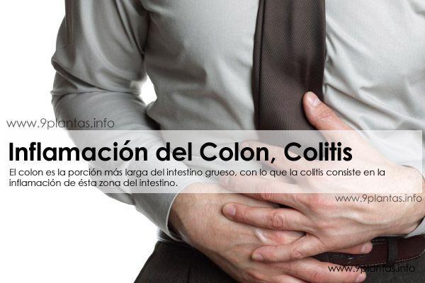 El colon es la porción más larga del intestino grueso, con lo que la colitis consiste en la inflamación de ésta zona del intestino.