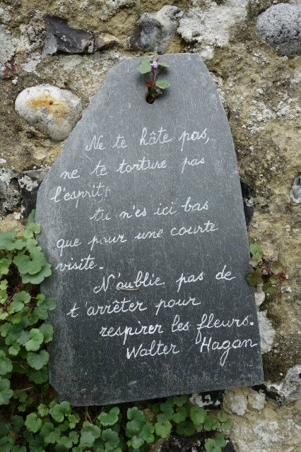 Un lieu coup de ♥: l'herbarium ancien jardin de l'hopital de Saint Valery, tenu par les soeurs Ursulines (jusqu'en 1964) et...