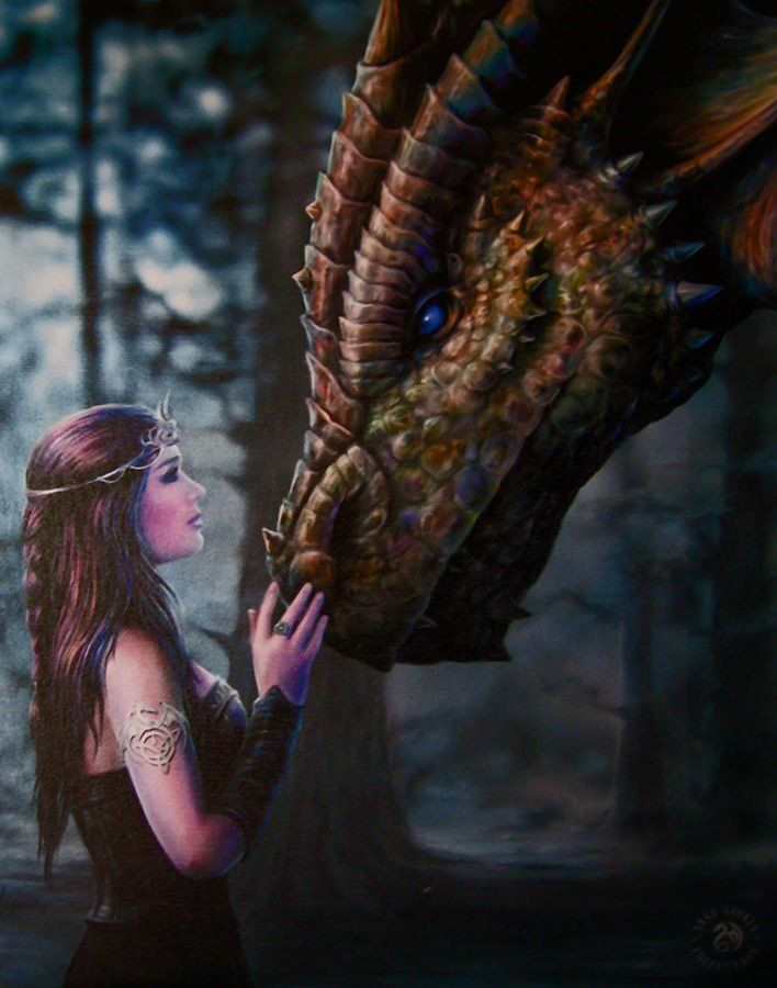 Once Upon a Time Wall Plaque Art Print | Anne Stokes Maiden with Dragon Canvas Art Print