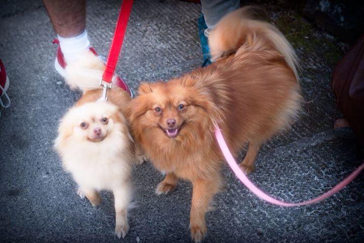 Nala and Sunny, sisterly love