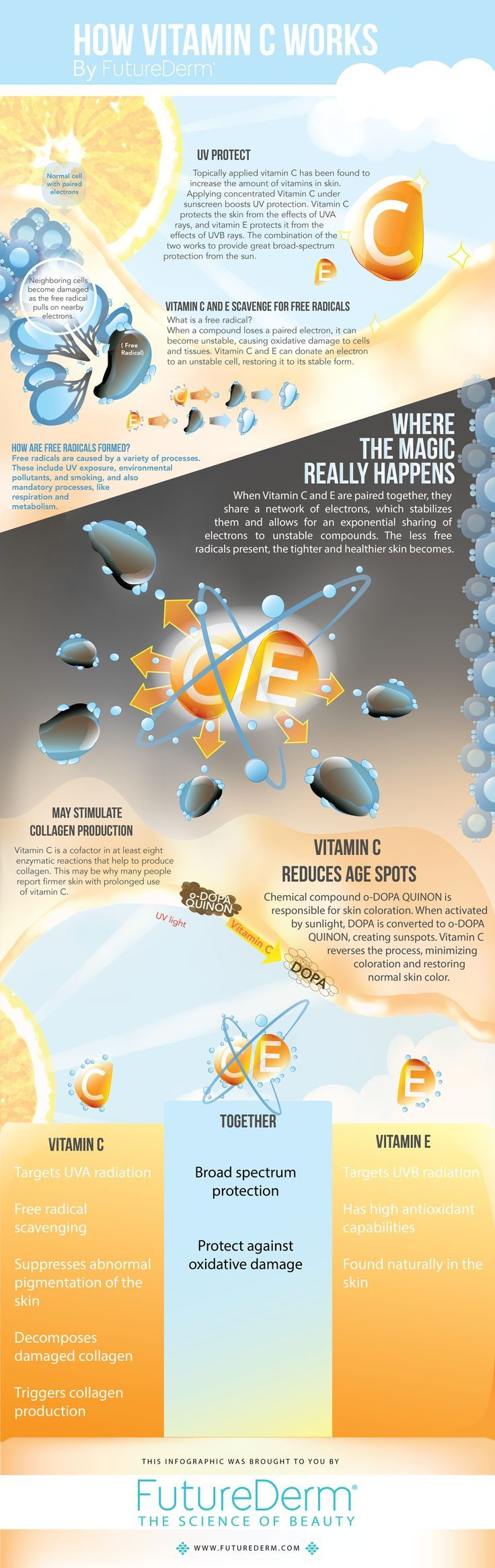 Infographic: How Vitamin C Works! I use it everyday! Try our fav from Image Skincare! Vital C at Tryst Studio! Contact me see the difference for yourself!