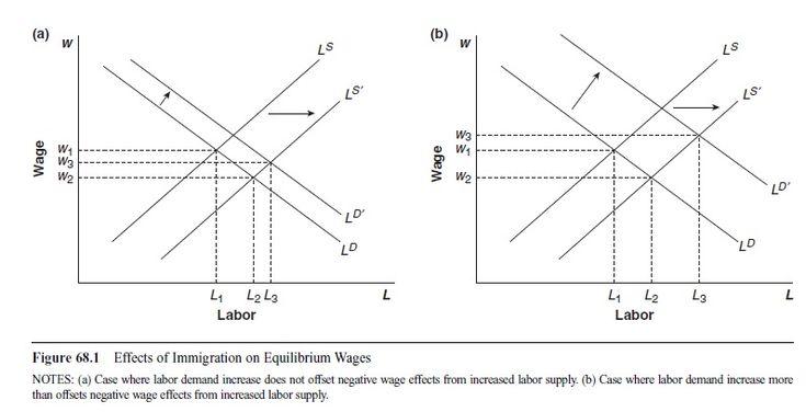 Research paper in economics