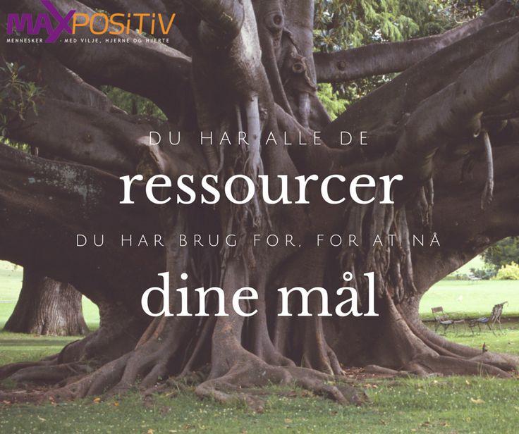 MAX Positiv | Du har alle de ressourcer du har brug for for at nå dine mål