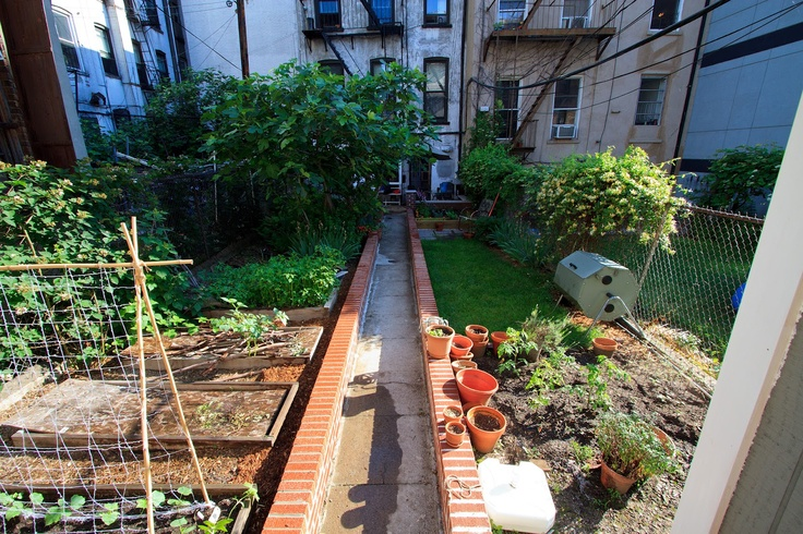 This Brooklyn Farm is home to a wide array of fruits and veggies. Grown in the city, eaten in the city. #UrbanGardening