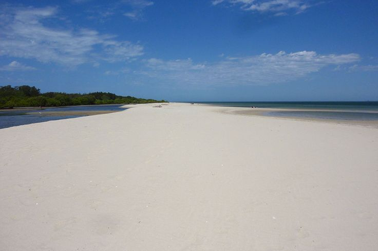 Here are our favourite spots on Bribie Island for soaking up the sun, swimming, walking and birding. If you still want more cross the island for a surf.