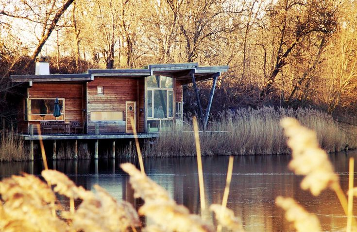 124 best tiny houses modern images on pinterest for Lake house plans on stilts