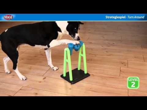 Top 11 Dog Puzzles Your Pooch Will Love - Proud Dog Mom