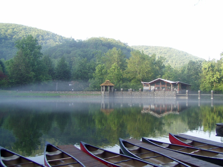 A misty morning on Lake Susan: Lakes Susan, Sweet Memories, Sweet Summertime, Home Asheville North, North States, Misty Mornings, Westerns North, Carolina Mountain, North Carolina