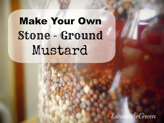 Make Your Own Spicy Stone Ground Mustard on Livin' In The Green at http://livininthegreen.blogspot.com/2013/12/make-your-own-spicy-stone-ground-mustard.html